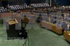 Asamblea General de la ONU resalta valores de la UNCLOS
