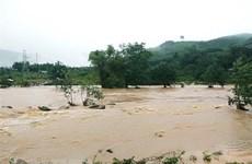 Cruz Roja de Vietnam ayuda a pobladores luego de desastres naturales
