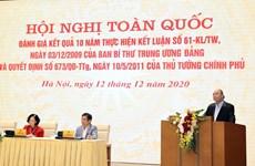 Destacan papel de agricultores vietnamitas en la construcción nacional