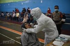 Indonesia se prepara para importar millones de dosis de vacuna contra el COVID-19