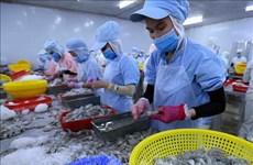 Exportaciones de productos acuáticos vietnamitas superan siete mil millones de dólares hasta noviembre