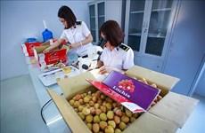 Relaciones económicas Vietnam-Australia, en momentos importantes