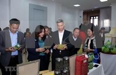 Promoverán los valores culturales únicos de Lai Chau en Hanoi