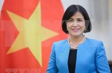 Vietnam promueve la participación de la ASEAN en organizaciones internacionales en Ginebra