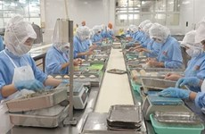 Exportaciones de productos acuícolas de Vietnam a China enfrentan dificultades por el COVID-19