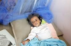 Exhorta Vietnam a combatir el hambre en Yemen