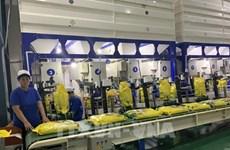 UEE concede cuota arancelaria de 10 mil toneladas de arroz a Vietnam