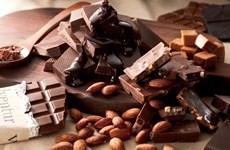 Provincia vietnamita exporta chocolate orgánico a Japón