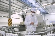 Vinamilk, mejor entidad entre las 10 principales empresas sostenibles vietnamitas 2020