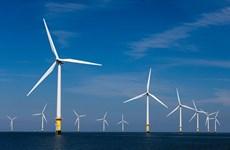 Desplegarán proyecto alemán de energía eólica marina en provincia vietnamita