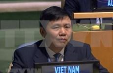 Reitera Vietnam apoyo a operaciones de Misión de ONU en Sudán del Sur