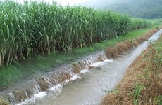 Vietnam y Taiwán (China) discuten métodos de descontaminación de suelos y aguas subterráneas
