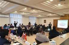 Fomentan cooperación económica entre Vietnam y Egipto