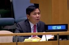 Vietnam cumple con sus responsabilidades en Consejo de Seguridad de ONU