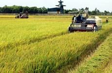 Simposio en ciudad vietnamita busca aumentar ingresos de agricultores