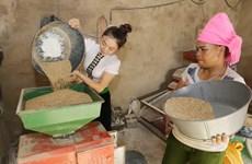 ONU respalda a progreso de áreas de residencia de minorías vietnamitas