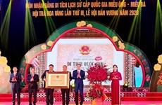 Divulgan valores de plantas medicinales de provincia vietnamita de Quang Ninh