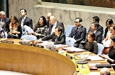 Resaltan aportes de Vietnam al Consejo de Seguridad de la ONU