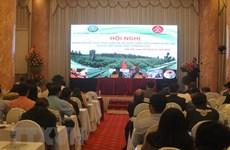 Desarrollan marca nacional de café vietnamita de alta calidad