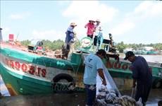 Kien Giang invierte 28 millones de dólares en infraestructura técnica para desarrollo pesquero