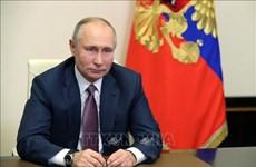 Presidente ruso Vladimir Putin felicita a Vietnam por Año Nuevo