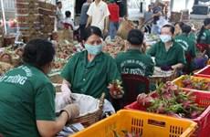 Provincia vietnamita Tien Giang apunta incrementar exportaciones en 2021