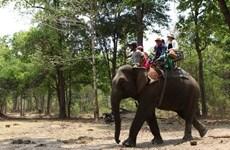 Busca provincia vietnamita integrar conservación de patrimonios en desarrollo turístico