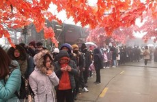 Polo turístico de Sa Pa recibe a 65 mil turistas en días festivos