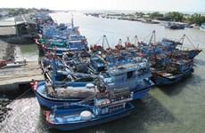 "Vietnam trabaja en pos de retiro de ""tarjeta amarilla"" aplicada a la pesca"