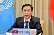 Vietnam prioriza la cooperación con ONU y organizaciones regionales