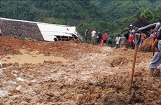 Deslizamientos de tierra en Indonesia provocan muertes y heridos