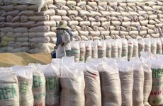 Filipinas importará 1,7 millones de toneladas de arroz en 2021