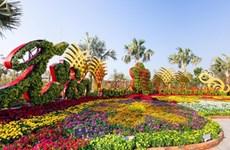 Mercado de Flores Primaverales del Tet embellecerá Ciudad Ho Chi Minh