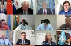 Vietnam condena ataques contra civiles en África Central y el Sahel