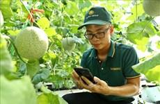 Vietnam busca aumentar productividad laboral en más de 7,5 por ciento para 2030