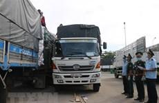 Provincia vietnamita registra exportaciones multimillonarias por puertas fronterizas