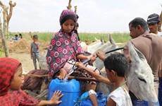 Vietnam exhorta a ofrecer más asistencia a Yemen