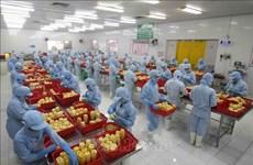 RCEP y oportunidades para la integración de productos agrícolas de Vietnam a la cadena de valor mundial