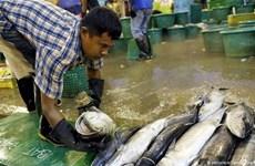 Trabajadores migrantes en Tailandia reciben ayuda pandémica de las empresas