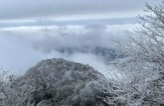 Norte de Vietnam sufre nuevamente frío intenso