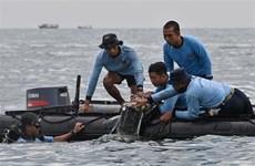 Indonesia: Prolongan labores de búsqueda del avión estrellado