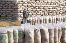 Exportación de arroz de Vietnam a Filipinas supera los mil millones de dólares