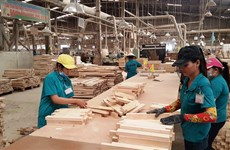 Vietnam, quinto exportador mundial de madera en 2020