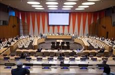 Vietnam apoya el proceso electoral democrático en Somalia