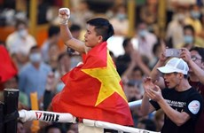 Provincia vietnamita de Quang Ngai acogerá Campeonato Mundial de Boxeo 2021