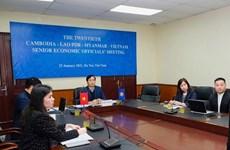 Debaten Plan de Acción Camboya-Laos-Myanmar-Vietnam para 2020-2021