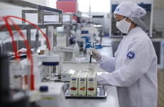 Empresa vietnamita Vinamilk alcanza ganancias millonarias en 2020 a pesar del COVID-19