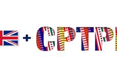 Vietnam dispuesto a compartir informaciones y experiencias sobre CPTPP con Reino Unido