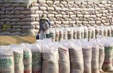 Aumenta precio del arroz de exportación de Vietnam