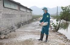 Primer Ministro vietnamita exhorta medidas drásticas para control de la gripe aviar